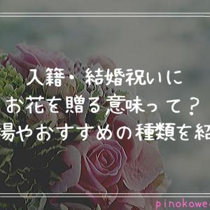 入籍・結婚祝いにお花を贈る意味って?相場やおすすめの種類を紹介