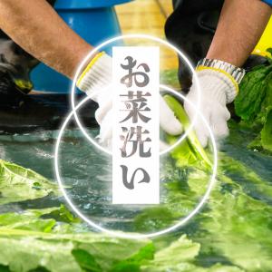 えッ!温泉で野菜を洗う!?