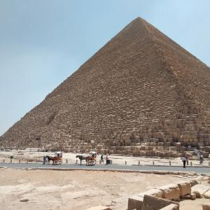 エジプトで息子と待ち合わせ。カイロ空港…私は怖かった!