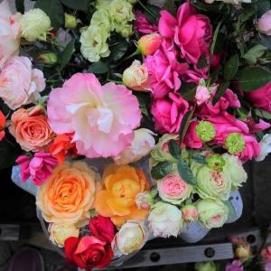 〔花がら摘みと蕾の切り取り〕