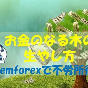 Gemforexで両建てスワップ実践編EURUSD お金のなる木の育て方