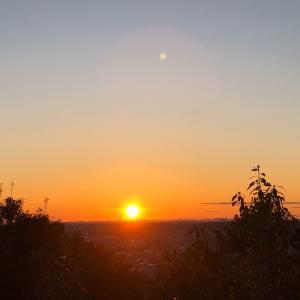 日の出を拝みにいってきました