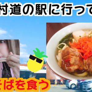 【YouTube】恩納村道の駅に行ってみたUPしました