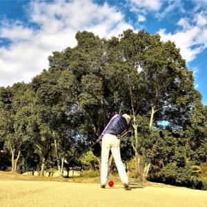 カタログギフトはゴルフコンペの幹事の負担を軽くする