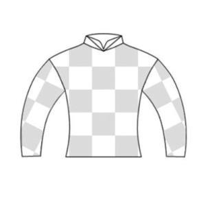 【フリーティングスピリットの20】(牡)~血統診断-馬場・距離適性-~インゼルサラブレッドクラブ
