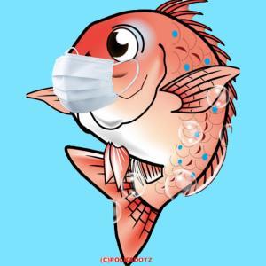 #644 鯛さん きっとマスクしてる❗ 釣れない❗  激々渋々〰️❗
