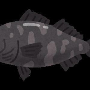 し、深海魚あらわるっ!