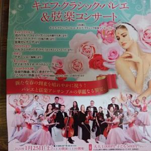 バレエ&弦楽コンサートを鑑賞してきました