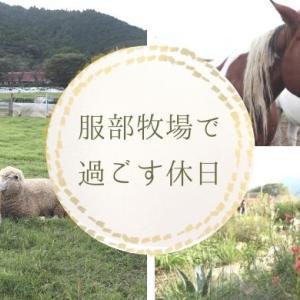 服部牧場(神奈川県)で動物たちとファームガーデンに癒されてきました