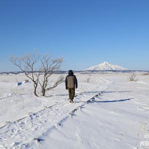 冬のサロベツ湿原センター遊歩道
