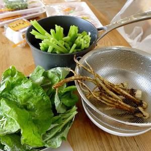 葉っぱも茎も根もぜんぶ食べる!八尾市特産の若ごぼうについて