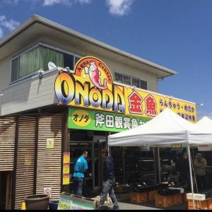 ツアー①斧田観賞魚センターさん