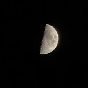 月をテーマに