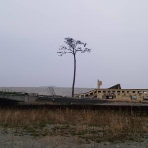 東日本大震災の被災地を巡る。【前編】