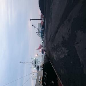 苫小牧西港 夕方 投げつつ探り釣り