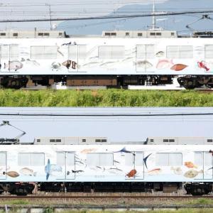 【資料】車両側面-近鉄2410系2423F