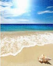 猛暑で暑くて身体を動かすにも辛い、冷房は気持ちよいが足腰が・・。