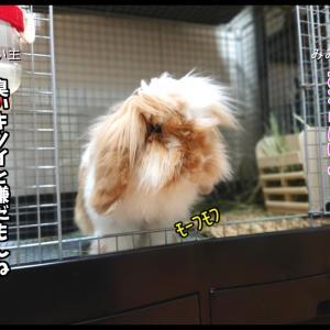 【4コマ】スメハラ/加齢臭