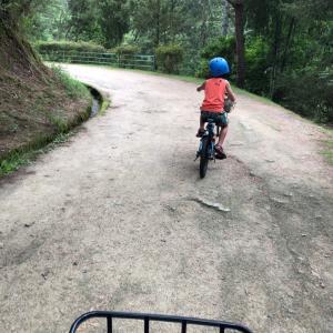 サイクリング( ♡ᴗ♡ )&卵アレルギーの息子のこと。