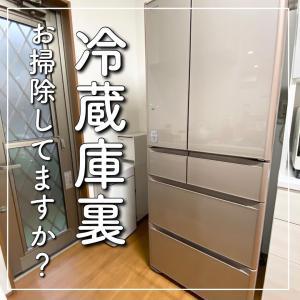 盲点だった冷蔵庫裏の掃除