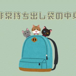 猫と一緒に避難所へ!非常持ち出し袋には何を入れていくべきか