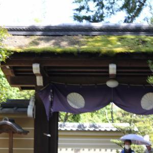 今日は京都府京田辺市の一休寺です