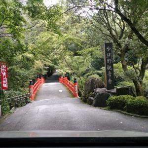 今回は京都市東山区 今熊野観音さんです。