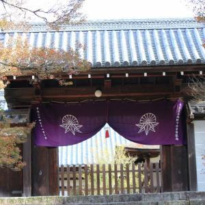 今日は京都市の曼殊院です