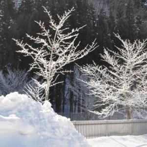 雪景色・・2