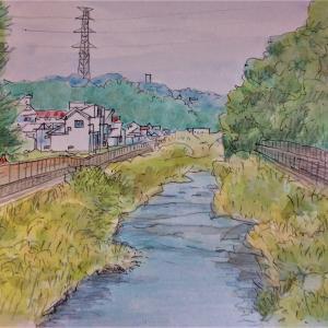 鶴見川周辺の秋をスケッチ