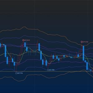 FX93日目 ドル円 総利益率(4.4%) エントリー怖しw
