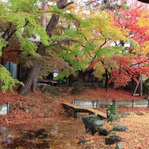 新潟県聖籠町 二宮家日本庭園秋の公開 (2018年11月)