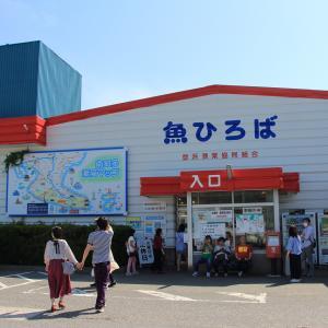 南知多町 豊浜漁港魚ひろば (2020年5月)