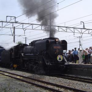 小淵沢駅 D51498SLやまなし号 (2010年6月)