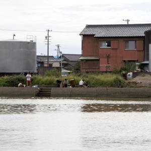 南知多 豊浜漁港のハゼ釣り (2021年9月)