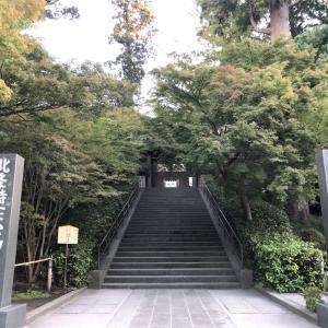 鎌倉の紅葉2019  今日の円覚寺  11月19日