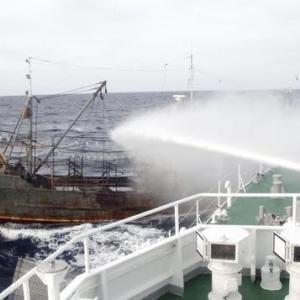 狙われる日本の漁業資源 水産庁の取締船の多くはチャーター船