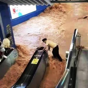 拡大する中国水害】 十万頭以上が豚/とん死に 砂漠までが冠水!?