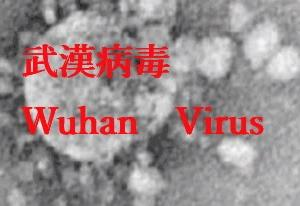 〇米国が武漢病毒研究所の大量データを取得 また大陸では感染拡大が続く
