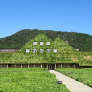 ラ コリーナ(滋賀県近江八幡市)ってどんなところ?全体像や見どころをご紹介!
