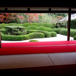 NHKおはよう関西でも紹介された甲賀市水口町の大池寺(だいちじ)の庭園と紅葉