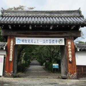 明智光秀ゆかりの西教寺(滋賀県大津市)とはどんなお寺?