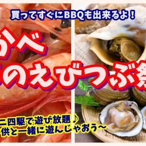 【鹿部春のエビつぶ祭り】春の海鮮をたっぷり味わえる贅沢グルメイベント
