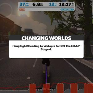 Zwift DE RACE 1h16m46s, 261W