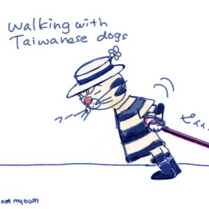 ゼログラビティ  台湾犬と一緒