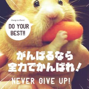 ~渋谷西柔道ブログ~【今日も今日でやったるよ~‼️】\(^^)/