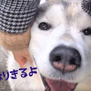 """~渋谷西柔道ブログ~【今日も張り切っちゃう~‼️】(⌒∇⌒)ノ"""""""