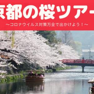 京都の桜ツアー~コロナウイルス対策万全で出かけよう!~