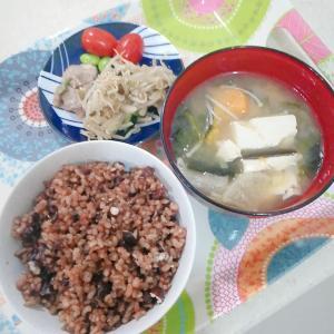 お米ダイエット20日目