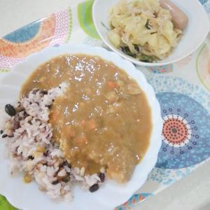 再お米ダイエット4日目